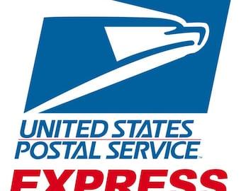 USPS EXPRESS MAIL 1-2 day Guaranteed
