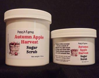 Autumn Apple Harvest Sugar Scrub 16oz