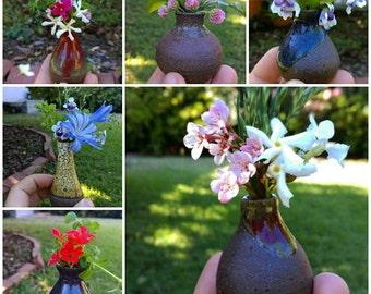Tiny Pots--Grab Bag Assortment of 5