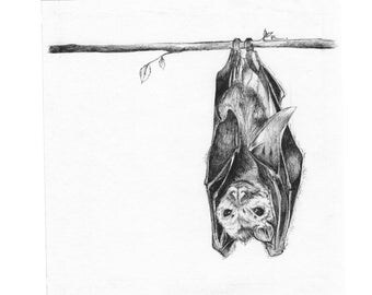 The Bat ORIGINAL DRAWING - Drawn By Rosie