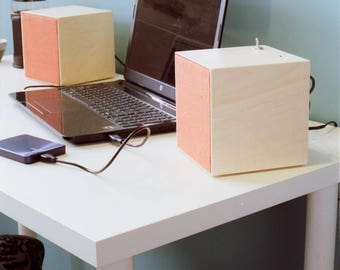 Computer FM300 speakers
