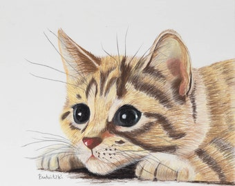 Kitten portrait: Soft pastel painting