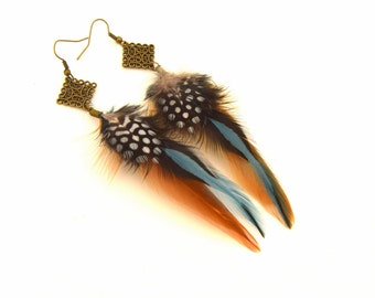 Earrings in feathers natural three-tone blue, Brown and black