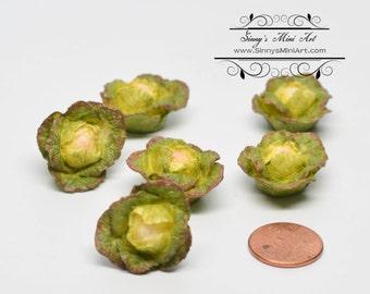 1:12 Dollhouse Miniature Cabbage 6 PC/ Miniature Groceries, Miniature Vegetable AZ A2487