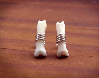 Bone Studs, Bone Stud Earrings, Witchy Earrings, Halloween Earrings, Samhain, Tribal Earrings