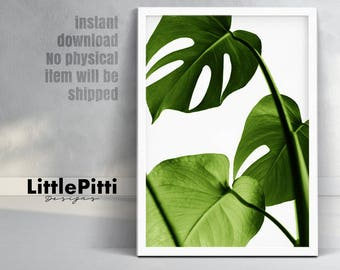 Tropical leaf, monstera print, green wall decor, living room printable, monstera wall print, tropical decor room, digital large wall art