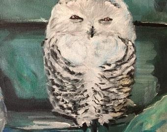 Chilling Owl