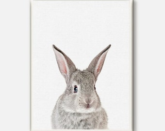 Bunny print, Rabbit poster, Nursery Art, Baby Room Animal Printable, Woodlands Rabbit wall art,Kids Room Print, Instant Download,Baby Animal