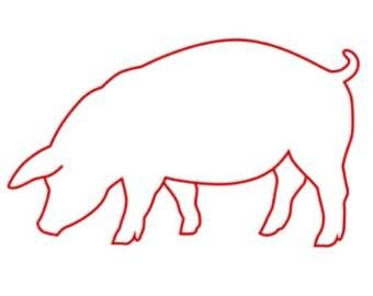 Pig Stencil Etsy