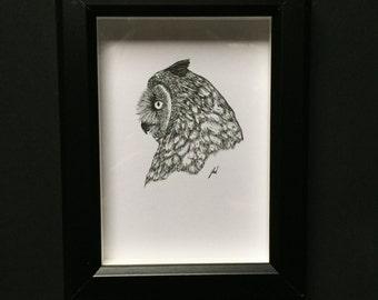 Great Horned Owl- Original Drawing