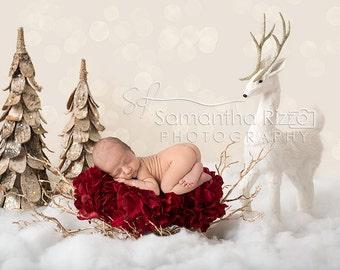 Digital Newborn Photography Background - Winter Flower Bed Christmas Backdrop (Set of 2)