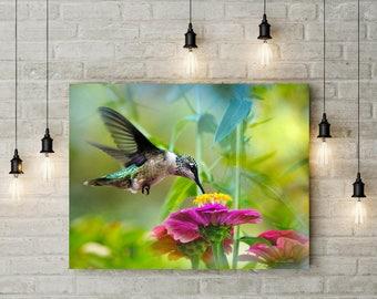 Wall Art Canvas, Hummingbird Gift, Canvas Art, Hummingbird Print, Canvas Wall Art, Fine Art Print, Nature Photography, Colorful Hummingbird