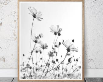 flowers wall art, flowers print, black and white photography, minimal wall decor, botanical print, floral poster, modern art, nature photo