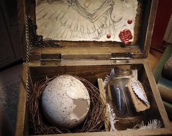 "Harpy Egg Specimen Curio Box Props ""HANDMADE"" Fantasy Creature/Mythology/Folklore/dungeonsanddragons/dragon/oddities/fantasycreature/larp"