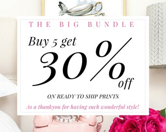 DISCOUNT COUPON - Buy 5 get 30% off. The Big Bundle - Please Do Not Purchase This Item