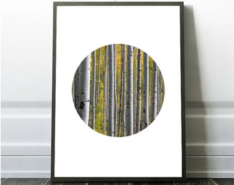 Forest Art, Forest Wall Art, Forest Poster Art, Printable Tree Art, Geometric Nature Art, Instant Print, Birch Tree, Botanical Wall Print