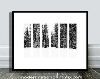 Forest Prints, Forest Wall Decor, Forest Wall Art, Nordic Wall Art, Forest Poster, Geometric Print, Forest Photography, Black and White, Art