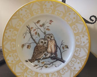 On Sale, Collectible Plate, Owl Plate, Edward Marshall Boehm, Boehm Plate, Collectible Owl Plate, Saw whet Owl, Vintage Plate, Owl Plate