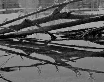 Reflections on Water / Water/ Lake  / Trees / Still Life / Wall Art / Rural / Abstract Art
