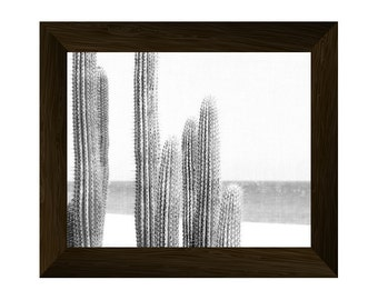 cactus wall art, black and white succulent print, desert photography,  cacti plant poster, printable artwork, instant digital download