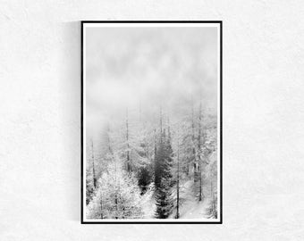 Winter Forest Photography PRINT, Landscape Poster, Modern Minimalist, Scandinavian Wall Art, Landscape Photography, Black And White