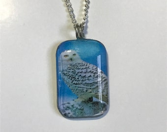 Snowy Owl Photo Pendant