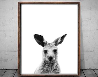 Kangaroo Print, Australian Animal Print, Kangaroo Photography, Australian Animal Wall Art, Australian Decor, Kangaroo Art, Instant Download