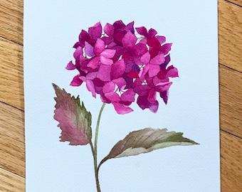 Watercolor Hydrangea, original painting, 7x10 watercolor painting, original art, pink flower painting, small painting, pink hydrangea
