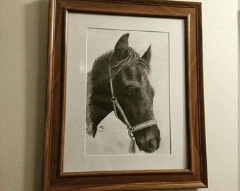 Beautiful hand drawn pictures of your beloved horse!