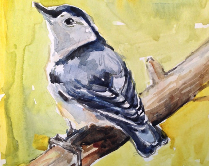 Watercolor Nuthatch No. 54, Translucent Watercolor, 6 x 6 inches