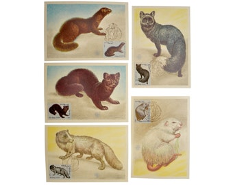 Original Vintage MAXIcards 1980 First Day Stamp 1 Set Quantity 5 Soviet Postage Stamp Ephemera Fur-Bearing Animals Paper Decor