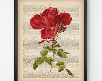 Wall art prints, Rose art print, Dictionary print, Digital download, Rose wall art, Rose vintage, Rose illustration, Print art, 8x10, 11x14