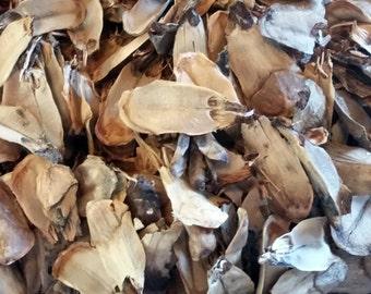 Bleached Pine Cone Scales, Pinecone Scales, Vase Filler, Potpourri