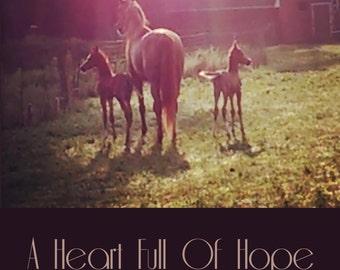 Full Horse Novel Digital PDF Download! A Heart Full of Hope
