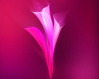 Floral swirls 'Pink '.