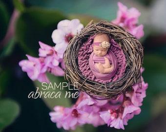 flowers bird nest newborn digital background/ newborn digital backdrop/instant download