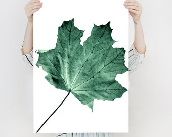 Single Leaf Photo-Green and White leaf Poster Print - Minimal botanical - detailed Photography- Easy large PRINTABLE ART-Instant Download