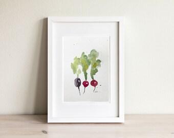Illustration radis, radish illustration / fait main, handmade