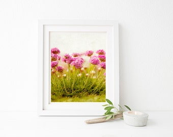 Set of 5 instant photo downloads. Pink coastal flower. For wall decor, greetings cards, mugs, cushions etc. Personal or commercial use.