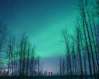 Canvas Print - Aurora Borealis in Palmer, Alaska