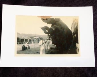 Cole Brothers Circus 1938 - Elephant and elephant trainer - 4 x 6 gloss - see description