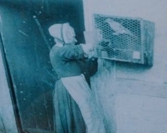 LARGE VINTAGE PRINT in English frame of an old lady feeding her pet bird, atmospheric wall art, home decor, ancient photographic print