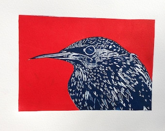 Starling in winter linocut