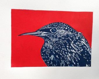 Starling in winter linocut