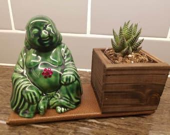 Buddha and succulent
