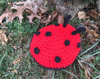 Lady Bug  Turtle Topper Tortoise Cozy