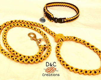 Leash and Collar Combo (included free custom dog tags)