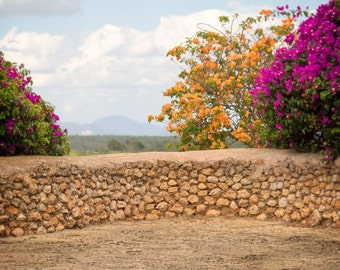 Stone Wall with Flowers , digitaler Backdrop, Manipulation, Photography, download, Art
