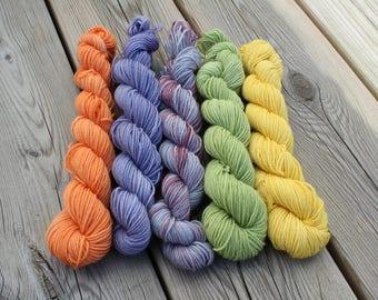 Set of 5*20 gr Mini Skeins. 75/25% Wool/Nylon