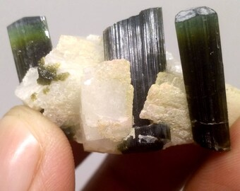 63.2 CT Green Cap Terminated Twin Tourmaline Crystal Specimen from Pakistan, Bunch of Tourmaline Crystals